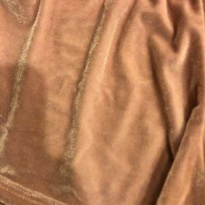 Brandy Melville Shorts - Velvet brandy Melville shorts